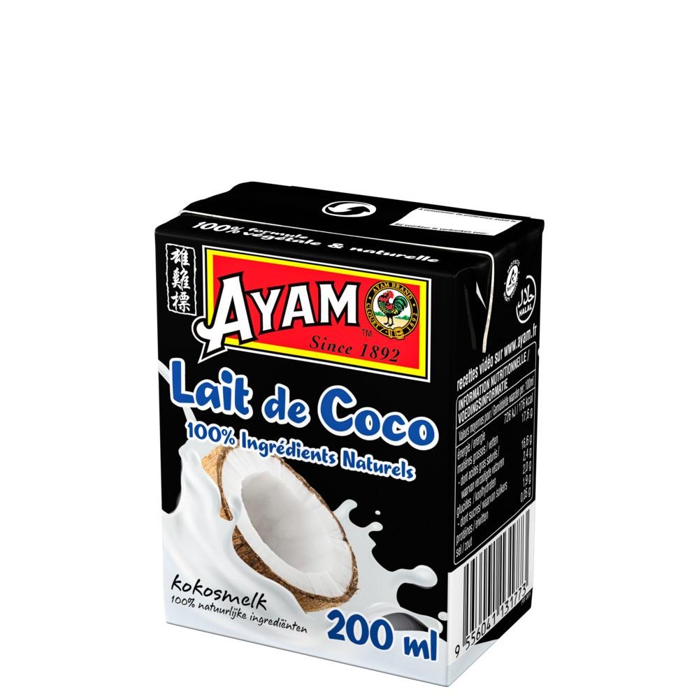 tijolo-leite-coco-100-ingredientes naturais-200ml-1